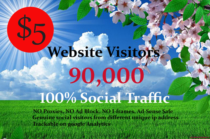 Provide Unlimited real Targeted web site Traffic