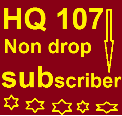 I WILL PROVIDE YOU 107+++ NON DROP YOUTUBE SUBSCRIBERS ONLY