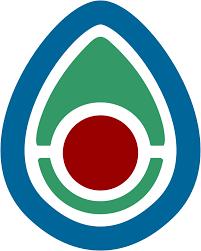 create a beautiful company logo
