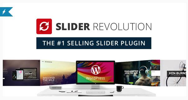 provide you premium Wordpress plugin