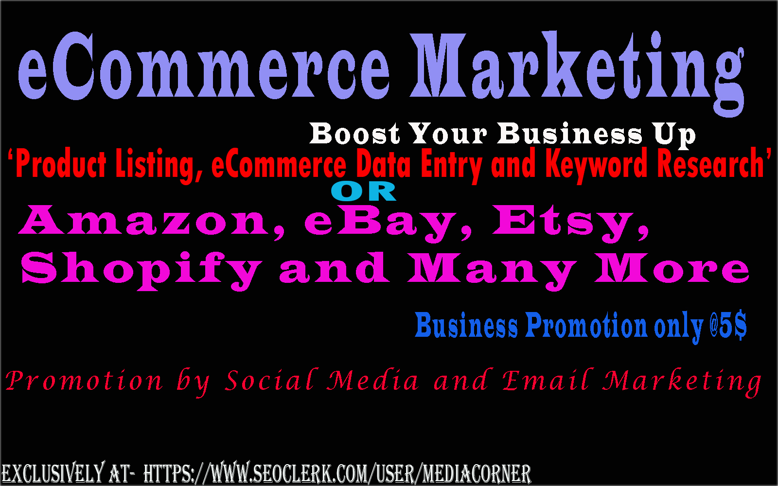 Do Any Sort Of ECommerce Data Entry And Posting
