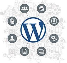 fix Wordpress errors, bugs, problems and customize theme