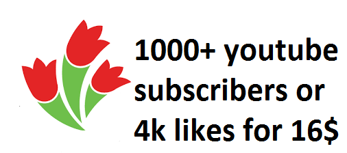 1000+ you tube subscribers or 4k likes only for