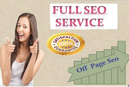 Give you full monthly seo work for your site