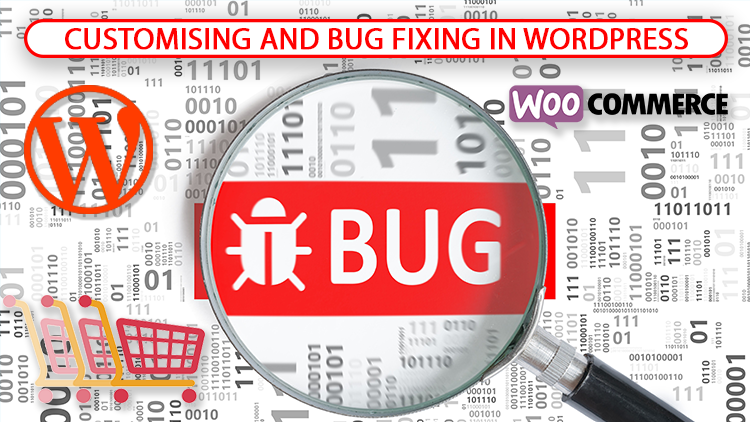 Customizing or fixing bugs/problems/errors/issues in your WordPress website/blog/e-commerce store