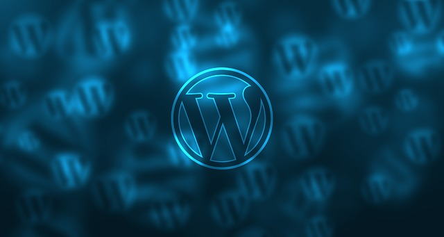 I develop your 5 page Wordpress Website