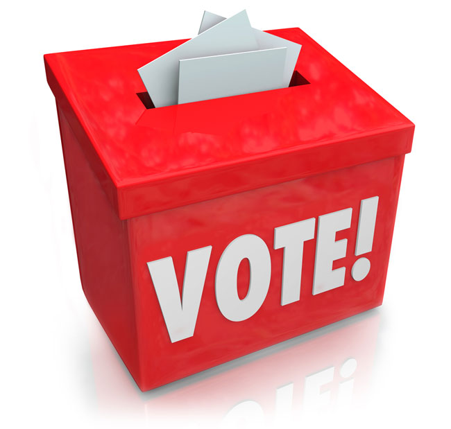 Provide 100+ Unique votes Towards On Your Voting Entry at Any Website or Poll Contest