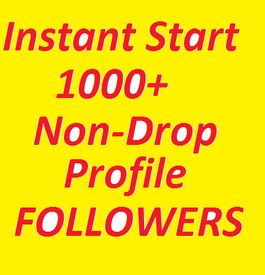 SUPER FAST 1000+ High Quality Profile Followers