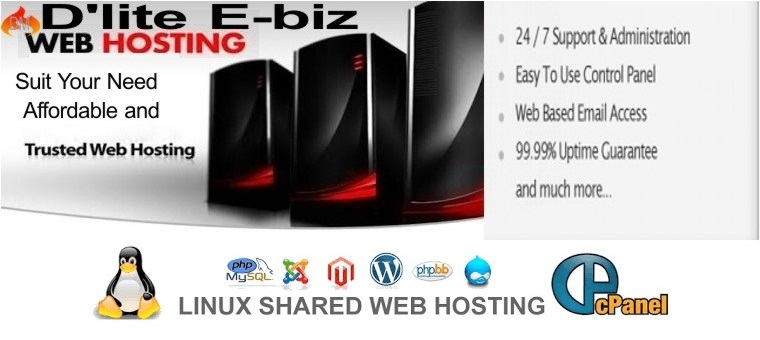Website And Web App Hosting per year