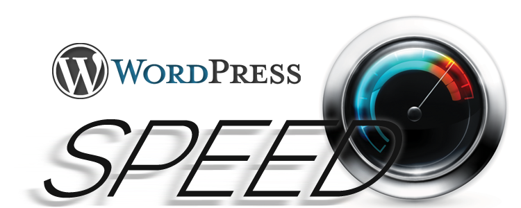 I Will Speed Up Wordpress More Than 90 Google Pagespeed Insights