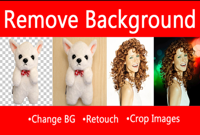 Photoshop, Remove Background, Crop, Resize of 10 Images