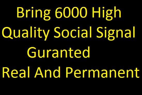 Bring 6000 High Quality Social Signals
