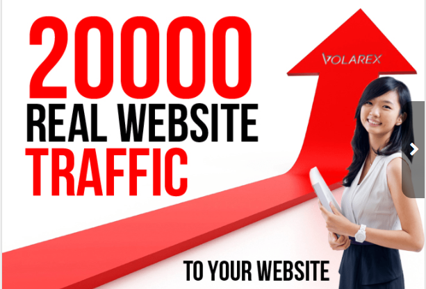 20000 + traffic to your website for 30 Days