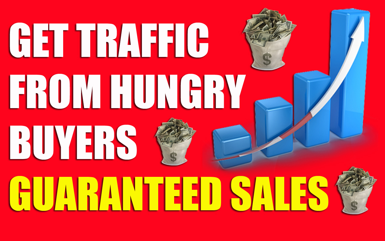 "Unlimited,Web,Traffic,For 30 Days from ""TURBO WEBSITE TRAFFIC"""