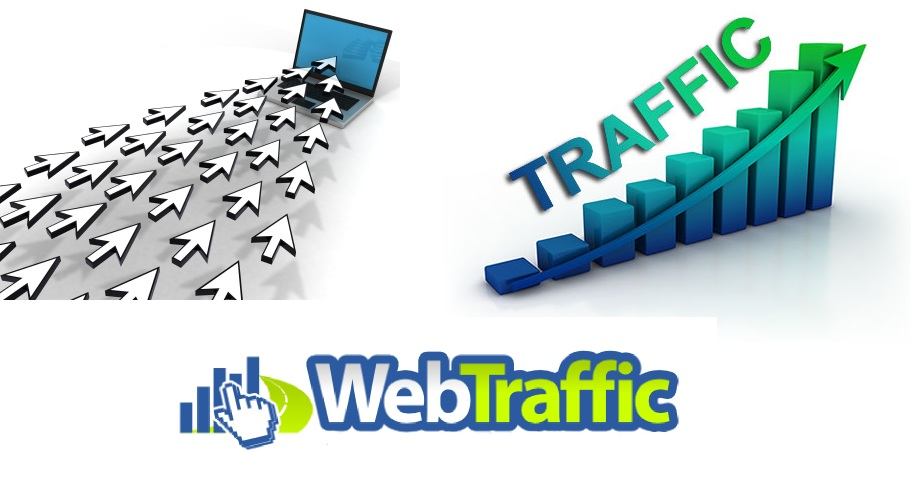 provide 10,000 Real Human traffic from USA in 24 hours