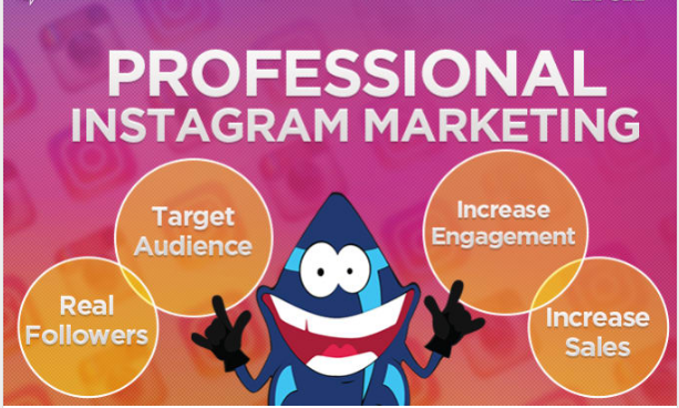 I Will Professionally Marketing And Manage Your Ins tagram