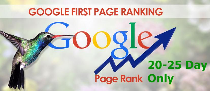 Gauranteed Google 1st page ranking only 20-25 day