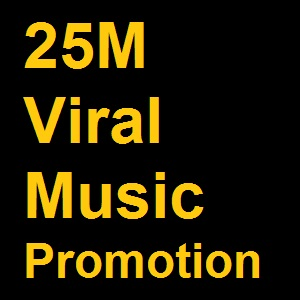 Viral Music Promotion to 25M People
