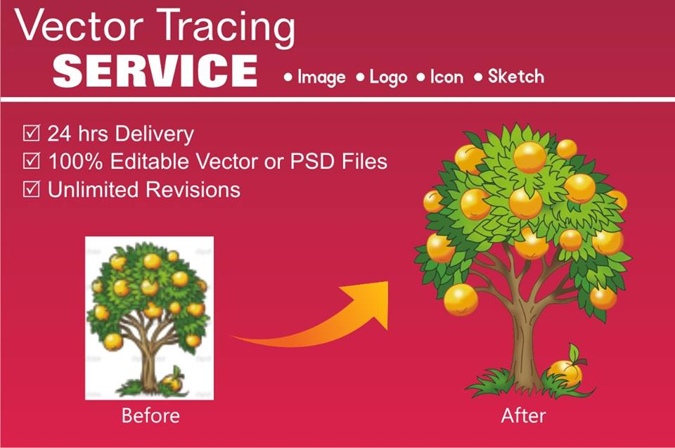 Do Vector Tracing Or Redraw Any Image