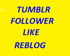 110 Tumblr followers or likes or reblogs in cheap rate