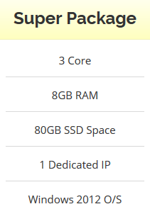 Windows VPS - 3 Core - 8GB RAM - 80GB SSD - Stable and Renewable!