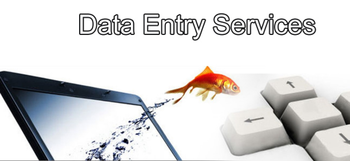 I Can Do Any Kind Of Data Entry work and be your virt...