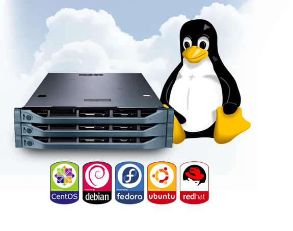 2XHigh Quality Linux VPS Optimized for all your needs