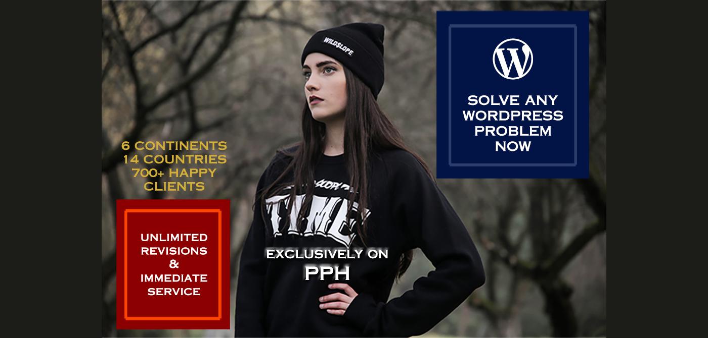 Solve Any WordPress Problem Instantly