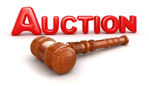 give you 337 articles on Auctions
