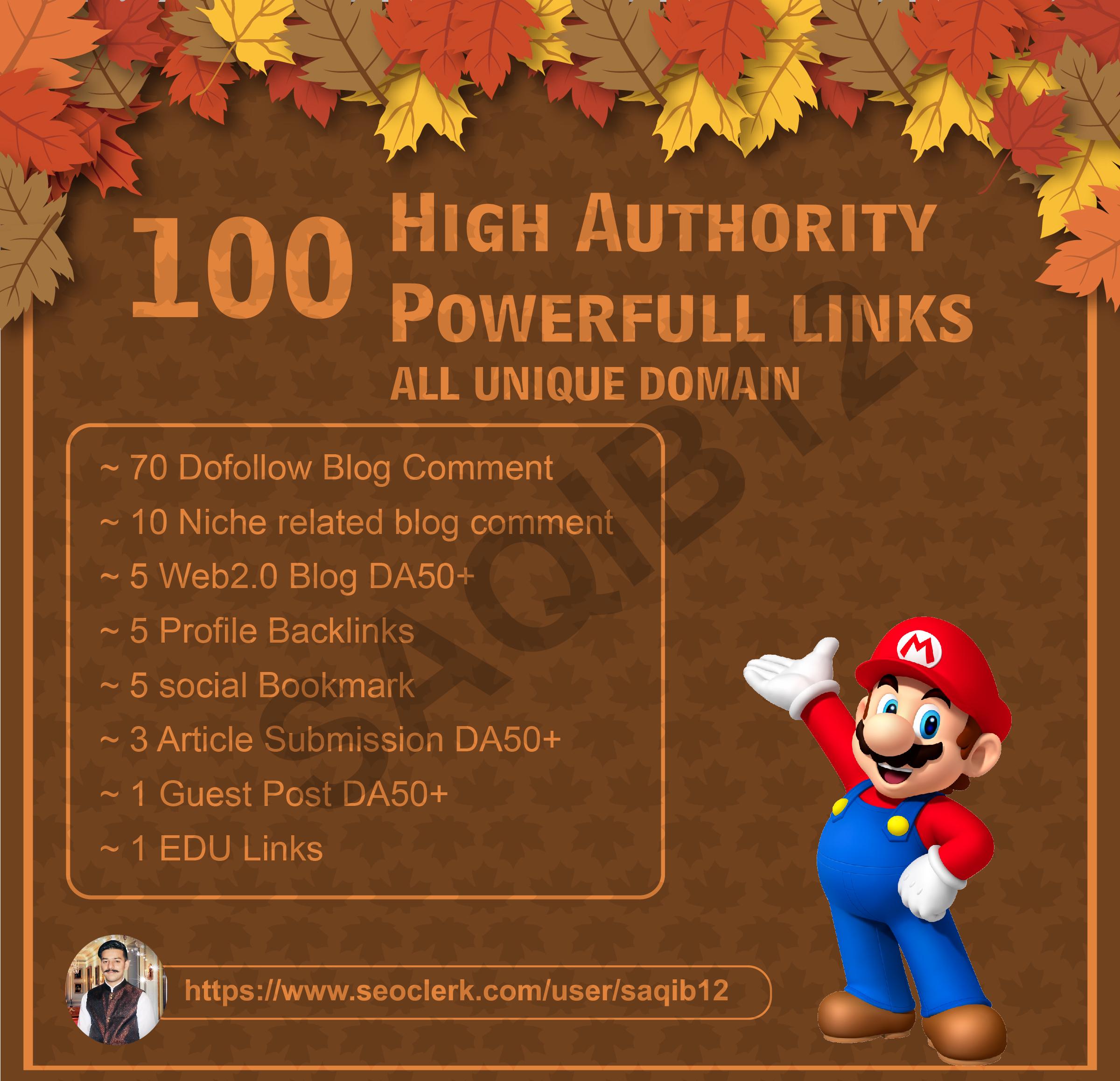 Build 100 High Authority Unique Domain Backlinks on SEO