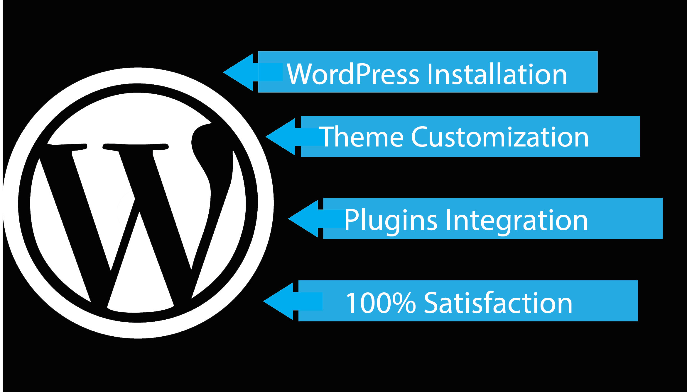 setup any wordpress theme precisely like its demo