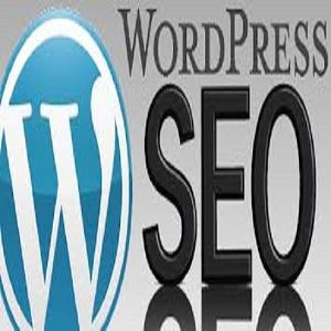 I'll do seo your wordpress website or blog