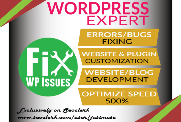 Fix Any Wordpress Errors Or Issues Within 3 Hours