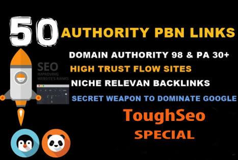 50 Permanent DoFollow High DA 90 PA 25-40 PBN Backlinks