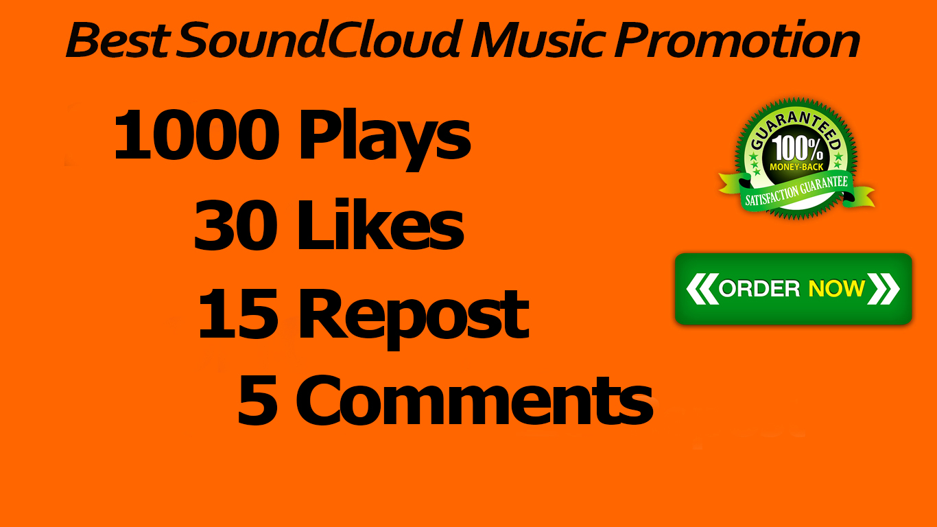 1000 Plays 30 Likes 15 Repost 5 Comments