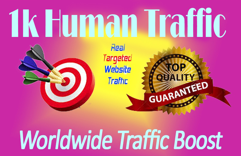 1k TARGETED Human Traffic to your Website/Blog