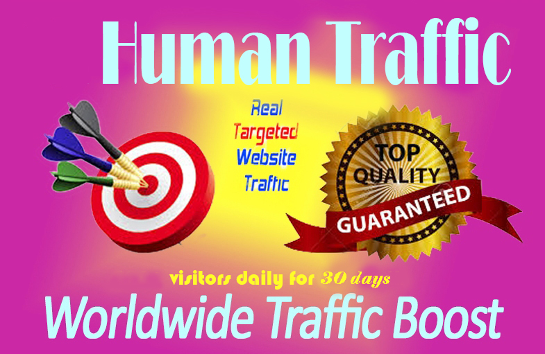 Happy New Year offer TARGETED Human Traffic Daily to your Website/Blog for 30 Days