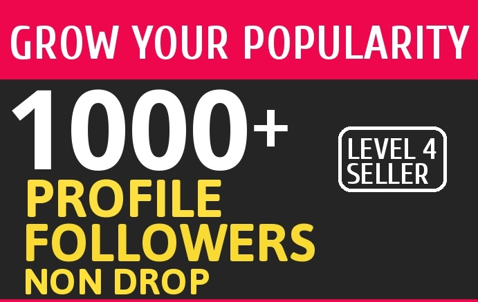 Add 1000 High Quality Fast Profile Followers NON DROP to Your Account