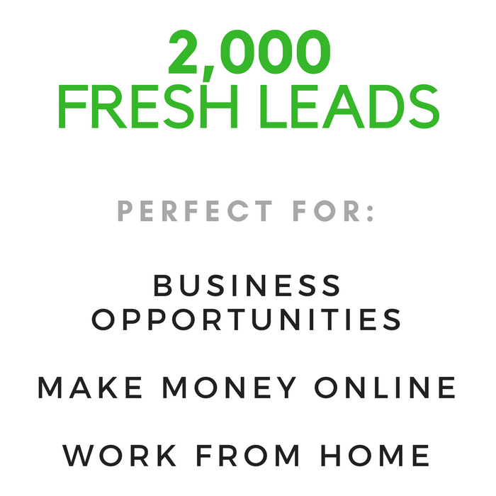 """Leads for """"Work From Home"""", """"Make Money Online"""", """"Business Opportunities"""" Niche"""