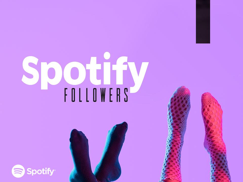 600+ Real Spotify Followers