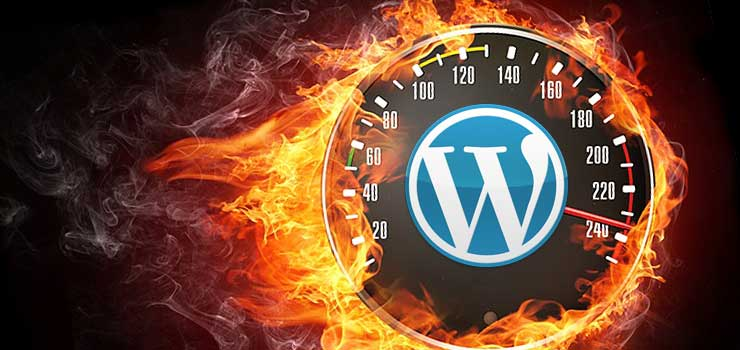 Increase Wordpress Speed And Optimization