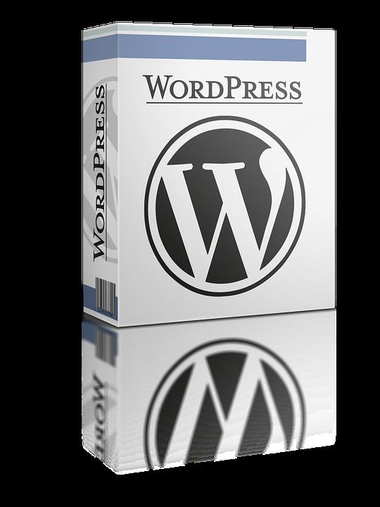 I Will Install Wordpress, Themes & Plugins.