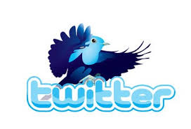 18,000+ 2k Bonus Twitter Followers Without Admin Access with in 24-48 hours, read gig than order plz