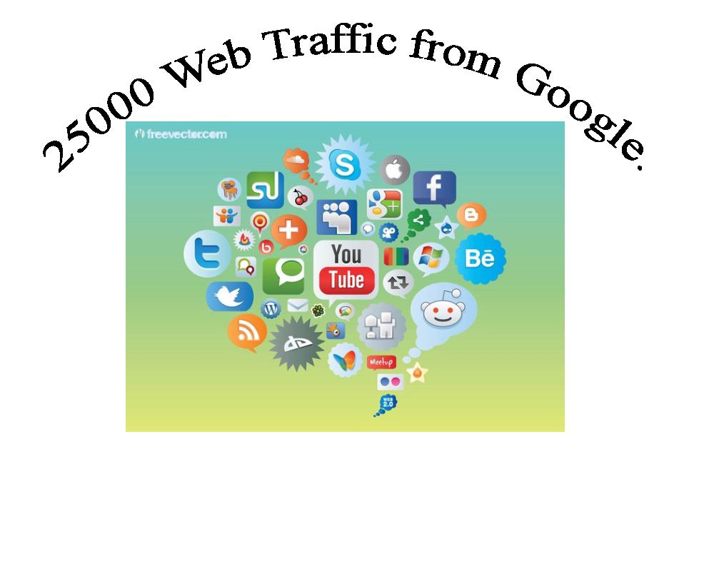 25000 Web Traffic from Google.