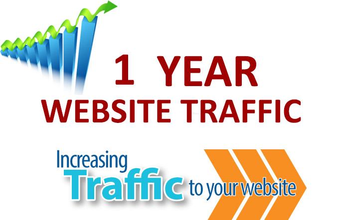 1 Year Website Traffic