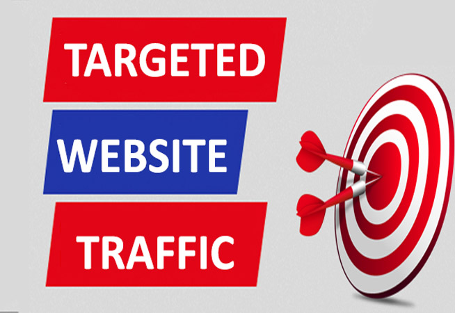 8,00,000+ Any COUNTRY TARGETED Human Traffic to your Website or Blog