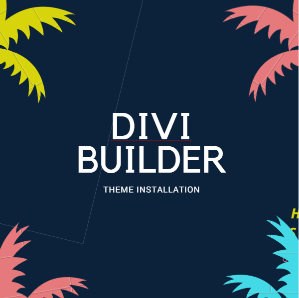 Divi Page Builder Theme Install Service on your Wordpress Website