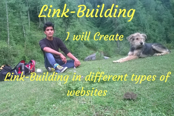 Do 300 backlinks within one month for you
