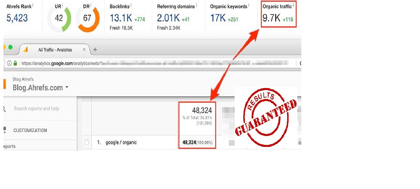 per day 5000 human web traffic your website one month