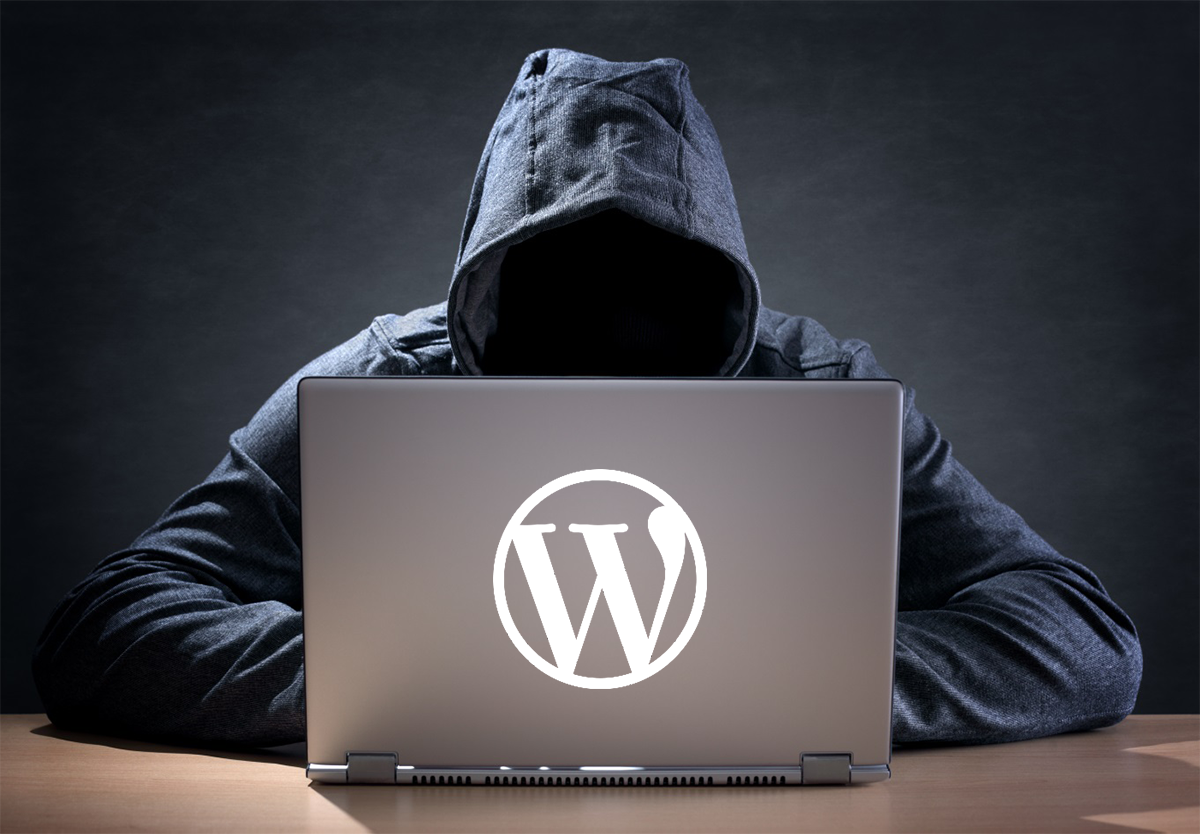 Fix your wordpress websites bugs and give security